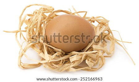 Organic egg in the nest isolated on white background.   - stock photo