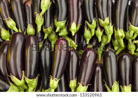 Organic eggplants in an open market at daytime. - stock photo