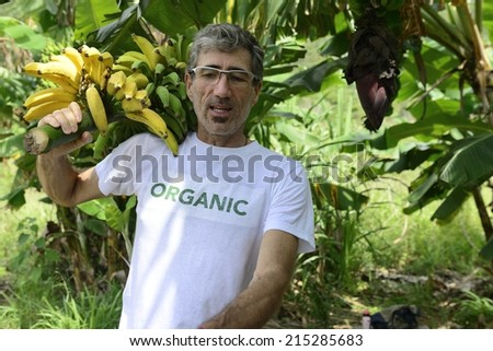 Organic Farming: Farmer carrying bananas - stock photo