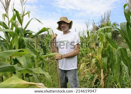 Organic farming: portrait of an eco farmer in corn plantation - stock photo