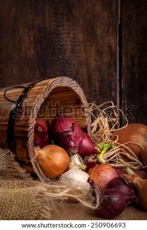 Organic fresh ingredients  - stock photo