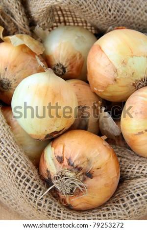 Organic fresh onion in linen bag - stock photo