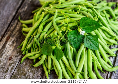 Organic Garden Fresh Italian Green Beans - stock photo