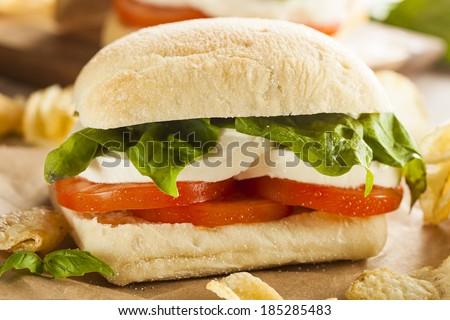 Organic Homemade Caprese Sandwich with Tomato, Mozzarella and Basil - stock photo