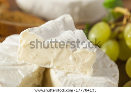 Organic Homemade White Brie Cheese with Bread and Grapes - stock photo