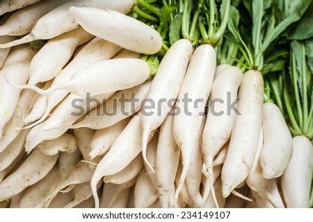 Organic local daikon radish vegetables for sale at outdoor asian marketplace - stock photo