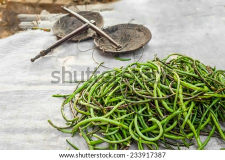 Organic local yard long beans for sale at outdoor asian marketplace - stock photo