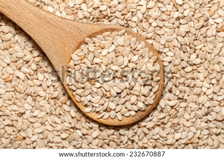 Organic natural sesame seeds on wooden spoon - stock photo