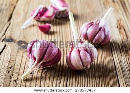 Organic raw purple garlic on wooden background,  head of garlic and purple cloves - stock photo