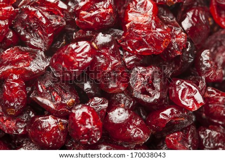 Organic Red Dried Cranberries in a Bowl - stock photo