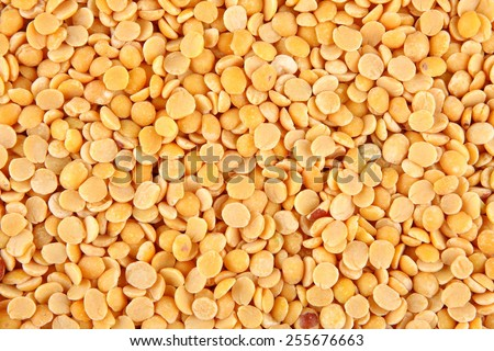 Organic ,unpolished  famous Indian legume also called yellow Pigeon peas.Selective focus. - stock photo
