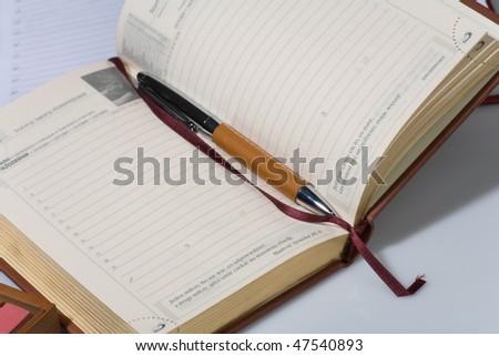 Organizer, pen, books. Financial concept - stock photo
