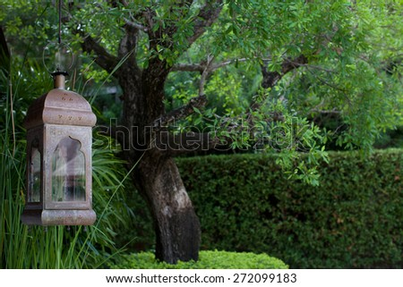 Oriental lantern hanging in a tree. - stock photo