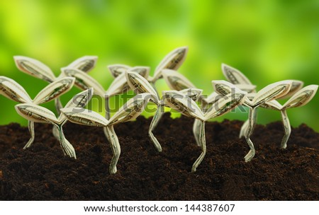 origami sprouts made from 100 dollar bill with green background - stock photo