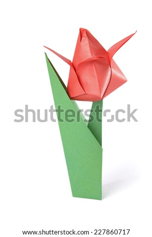 Origami tulip over white - stock photo
