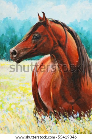 Original acrylic painting of a fine arabian horse.Picture I have created myself. - stock photo