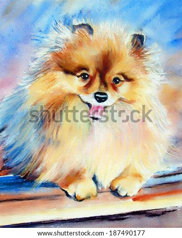 original art, painted portrait of Pomeranian puppy - stock photo