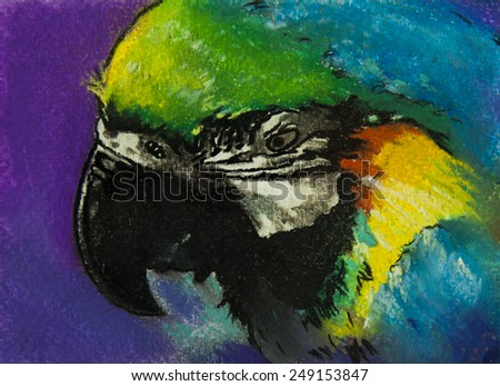 Original pastel painting on paper.Parrot. - stock photo