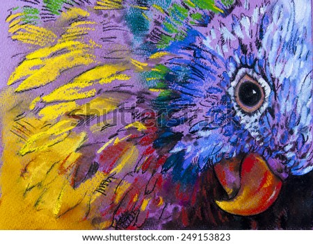 Original pastel painting on paper.Parrot surrounded by colors. - stock photo