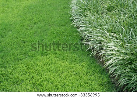lawn edge stock photos images pictures shutterstock