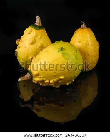 Ornamental pumpkins on black background - stock photo