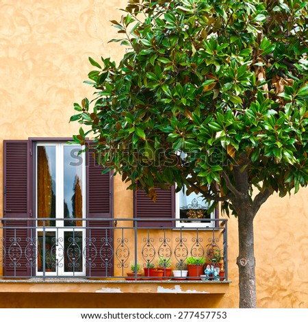 Ornamental Tree on the Background of the Facade of Italian House with Balcony - stock photo