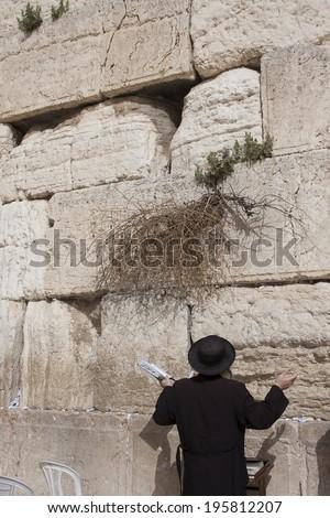 Orthodox Jew prays at the Western Wall - stock photo