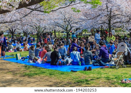 OSAKA - APRIL 5: Visitors enjoy cherry blossom on April 5, 2014 in Osaka Castle Park. It is a public urban park and historical site situated at Osaka. - stock photo