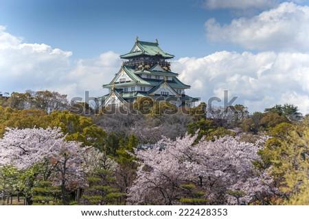 Osaka castle with sakura blossom in Osaka, Japan - stock photo