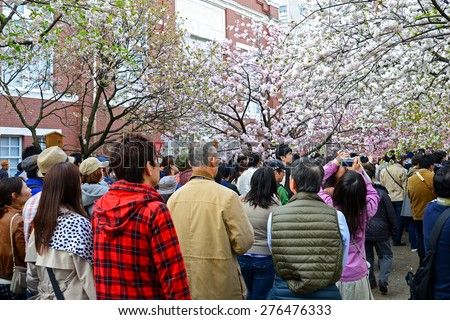 OSAKA, JAPAN - April 11: Crowd of people at Japan Mint in Osaka, Japan on April 11, 2015. It is the famous Cherry Blossom Viewing in Osaka. - stock photo