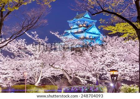 Osaka, Japan at Osaka, Castle with cherry blossoms. - stock photo