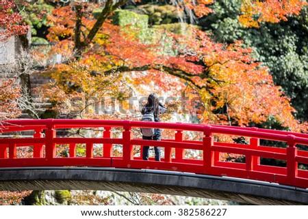 OSAKA, JAPAN - November 11, 2015: Mino Falls Meiji-no-mori Mino Quasi-national Park autumn scenery at Ryuanji temple in Mino park - take photo in early autumn season before red maple grown - stock photo