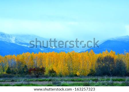 Oto�±o sierra de Gredos - stock photo