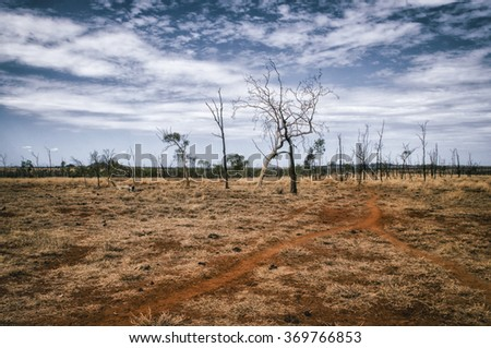 Outback landscape in New Wales, Australia - stock photo