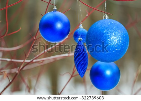 Outdoor Christmas decorations with deep blue sparkles bauble ornaments is hanging on tree red branches - stock photo