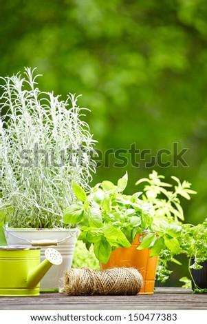 Outdoor gardening tools  - stock photo