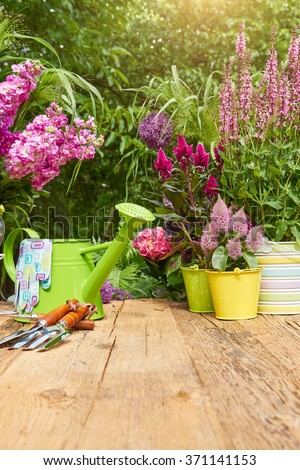 Outdoor gardening tools on old wood table  - stock photo