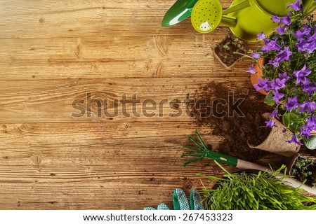 Outdoor gardening tools, plants and can, close-up. - stock photo