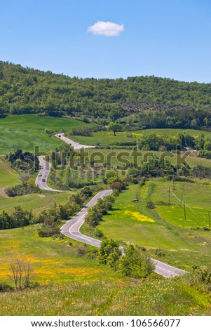 Outdoor green Tuscan view with local curve road. Vertical shot - stock photo