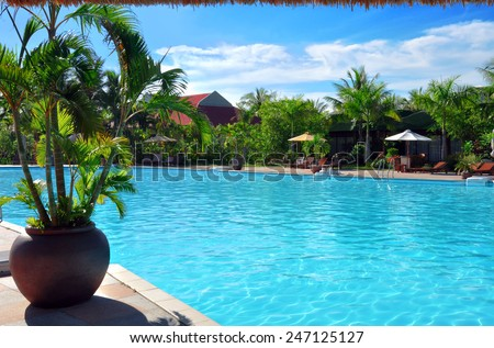 Outdoor pool with palms - stock photo