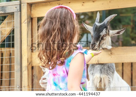 outdoor portrait of young happy young girl feeding goat on farm - stock photo
