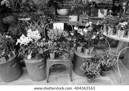 Outside of French flowers shop. Aged photo. Black and white. - stock photo