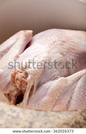 Oven roasted turkey in sink raw - stock photo