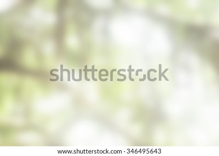 Over blur forest and sky and flower with De focused Bokeh background art for paper texture, backdrop design. green summer, green ecology concept. color pattern brown, white, green concept - stock photo
