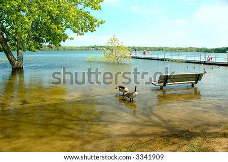 Overflowing lake - stock photo