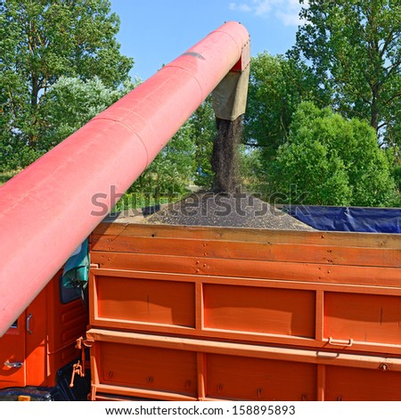 Overloading of rape seed with a combine grain tank car - stock photo