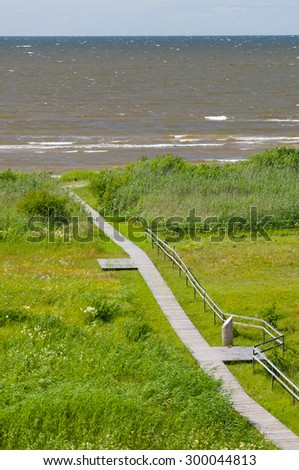 Overlook on seaward wooden boardwalk, vertical view from watch tower - stock photo