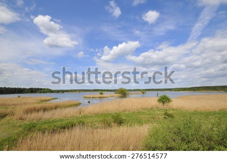 Overlooking the Tauerwiesenteich in Förstgen in Saxony. - stock photo