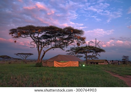 Overnight in tents in savanna camp during safari - stock photo