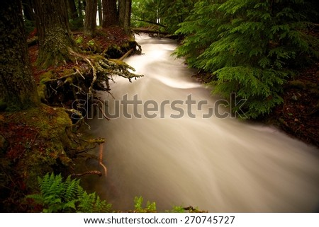 overrun brook in glacier national park - stock photo
